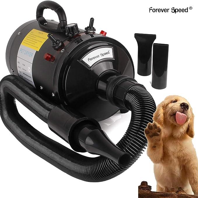 Forever Speed Secador de Pelo para Perros Gatos Mascotas Secador de Cabello Temperatura y Velocidad Ajustable (Estándar Europeo) (Negro, 2400W) (Negro-2400W): Amazon.es: Deportes y aire libre