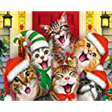 Diamond Painting by Number Kit DIY Crystal Rhinestone Cross Stitch Embroidery Arts Craft Picture Accessories for Home Wall Decor, Full Drill Happy Cats - 12x16 inches