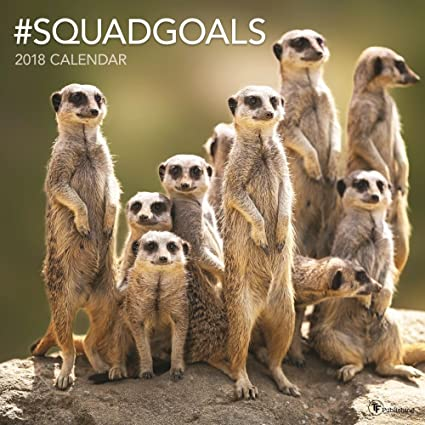 2018 animal squadgoals wall calendar