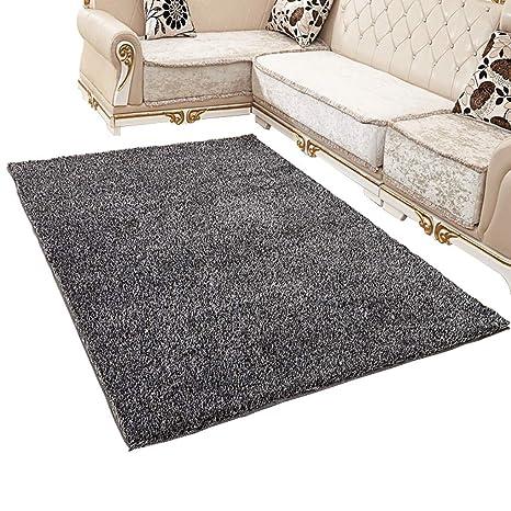 Amazon.com: Carpet Continental Korean Silk Carpet Living ...