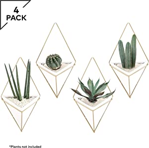 Set of 4 Gold Hanging Large Succulent Wall Planters Pot, 7 inch White Ceramic with Metal Triangle, Kitchen Decor as Cactus, Aesthetic Room Decoration, Baby Plants Flower Pots, Office Vase, Container,
