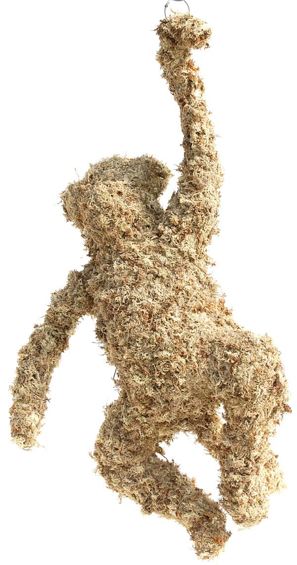 Monkey Topiary (27'') Sphagnum Moss Topiary Form by Topiary Art Works