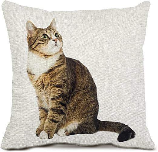 Cat Pattern Polyester Throw Pillow Living Room Cushion Cover Car Home Decoration