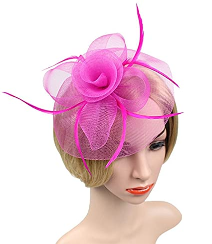 63b0178ccfee Image Unavailable. Image not available for. Color  Wcysin Women s Vintage Flower  Feather Mesh Net Fascinator Hair Clip Hat Party Wedding (Hot pink