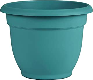 "product image for Bloem (AP1226 Ariana Self Watering Planter 12"" Bermuda Teal Green"