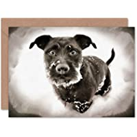 Card Greeting Gift Photo Painting Cute Puppy Dog Winter Snow