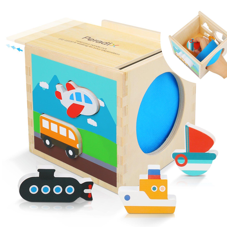 Peradix Shape Sorter Toy Classic Wooden Blocks Developmental Toy Baby Boys & Girls Shape & Color Learning Ativity Center