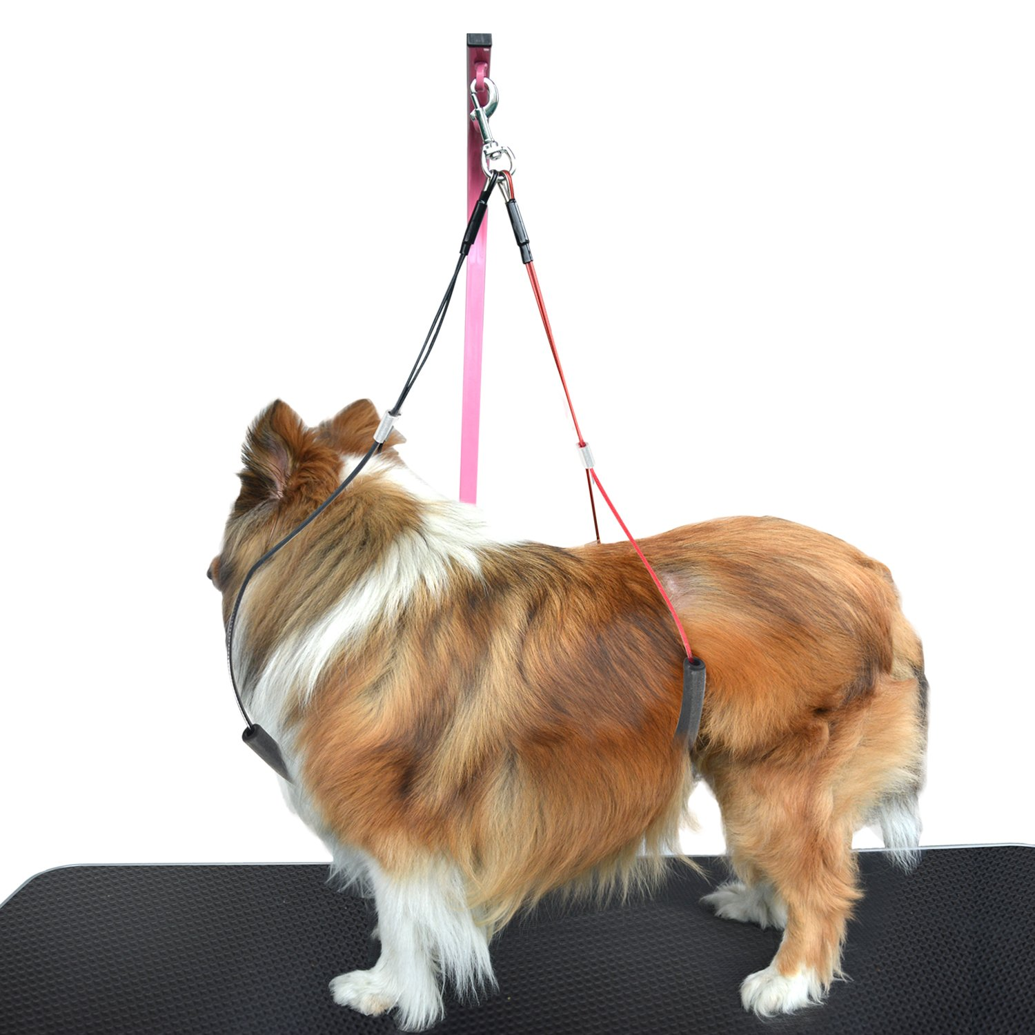 Large SHELANDY Pet Haunch Holder Dog Grooming Loop Restraint for Small Large Dogs (Large)