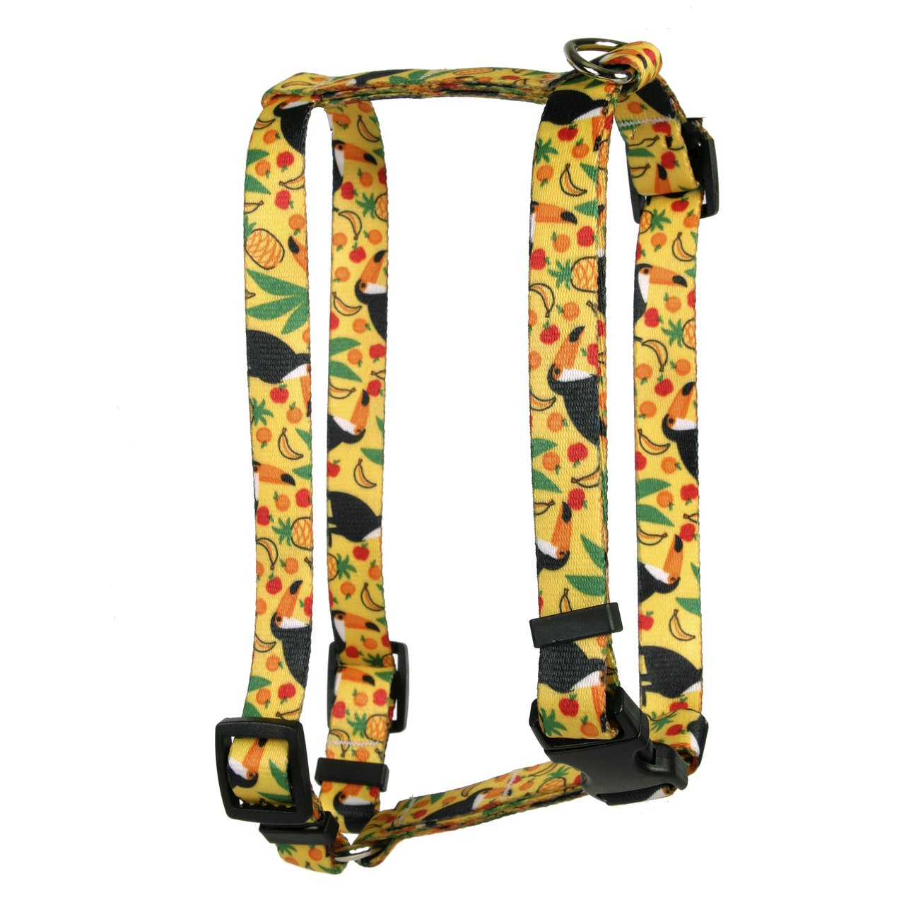 Yellow Dog Design Fruity Tucan Roman Style H Dog Harness, X-Large/1'' Wide
