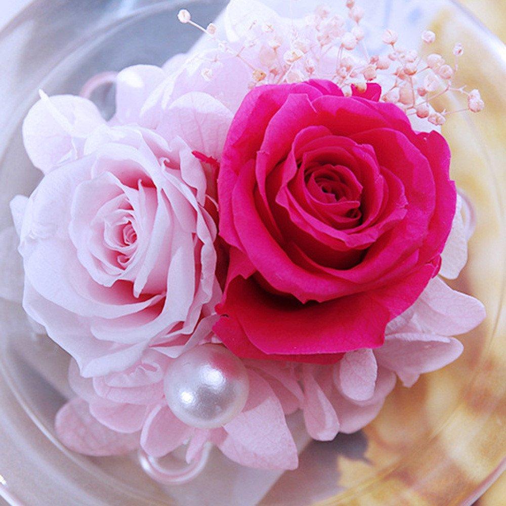 Ecurson クリエイティブガラスカバー 永遠の花 バラ バレンタイン、母の日、記念日、誕生日ギフトに最適 6-7cm レッド YU-174  レッド B07N6PBZWZ