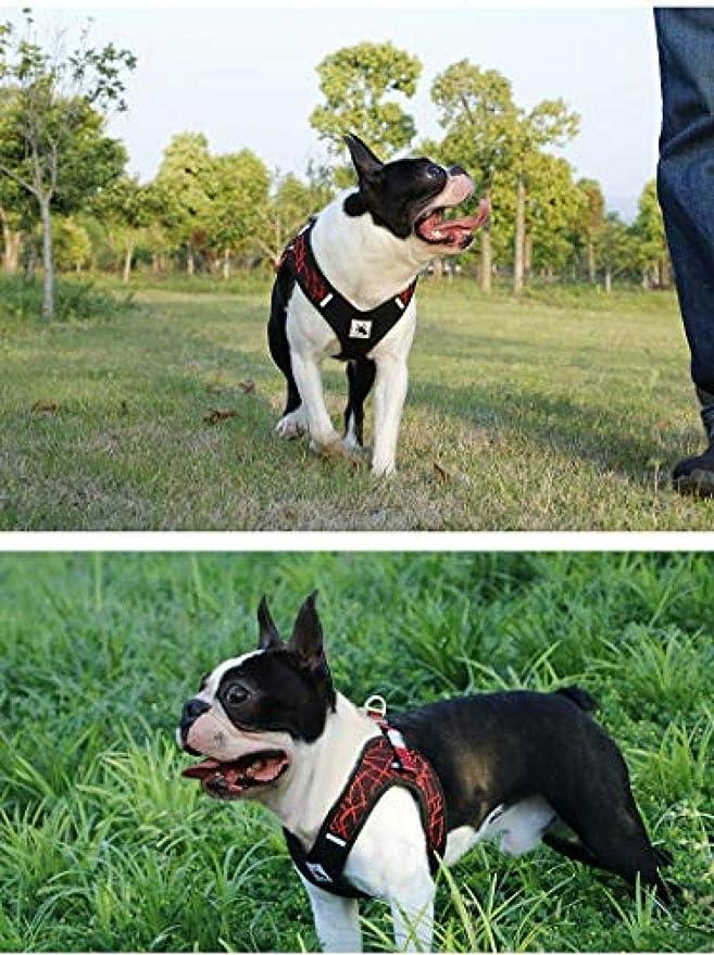Friend&Dogd Arnés para Perros para Perros Bulldog francés ...