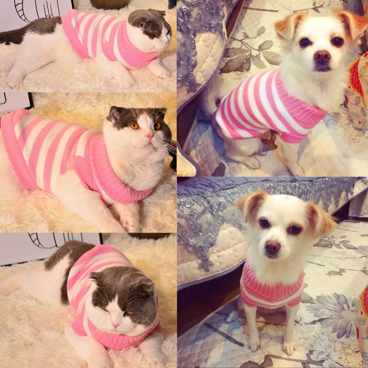 cani chihuahua Maglione per gatti carlini maglione invernale elastico e comodo per piccoli gatti