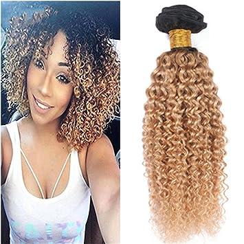 a7fe367eacf1b9 Tony Beauty Hair Kinky Curly 1B 27 Dark Root Honey Blonde Ombre Human Hair  Weaves
