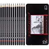 Professional Drawing Sketch Pencils Set of 12, Medium (8B - 2H), Ideal for Drawing Art, Sketching, Shading, Artist…