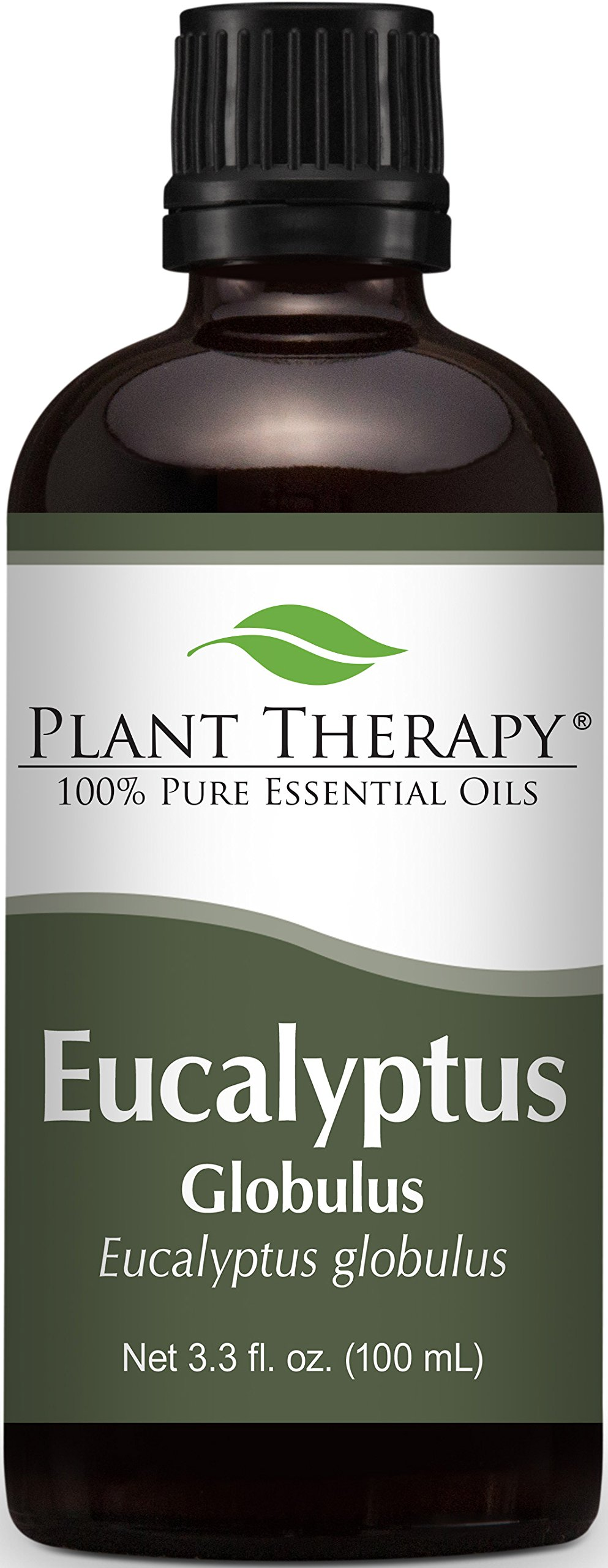 Plant Therapy Eucalyptus (Globulus) Essential Oil. 100% Pure, Undiluted, Therapeutic Grade. 100 ml (3.3 oz).