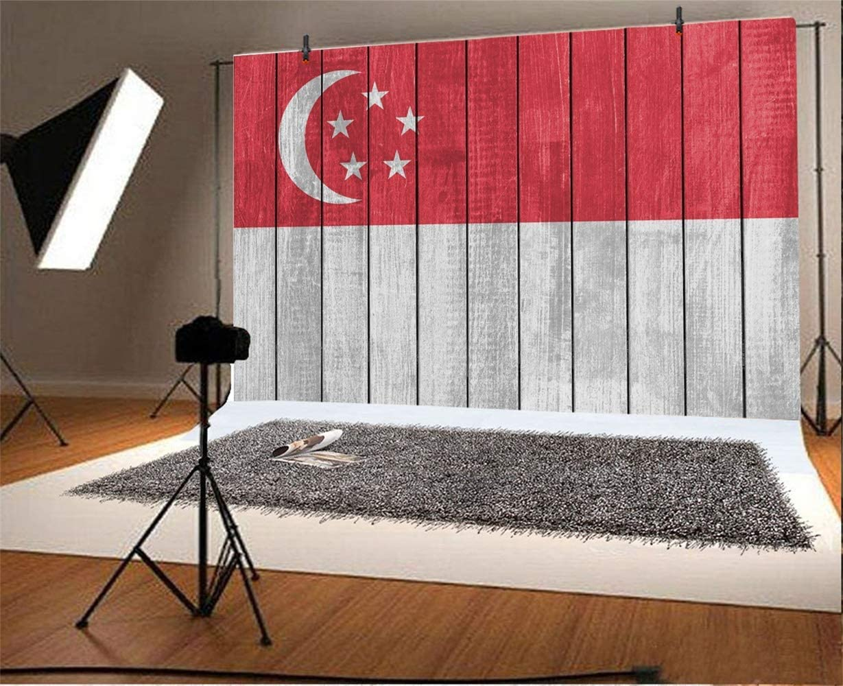 GoEoo Singapore Flag Painted On Wood Plank Background 8x6ft Vinyl Patriotic Wooden Board Photography Backdrops Rustic Wood Texture Wall Backdrop Child Adult Portraits National Festival Banner
