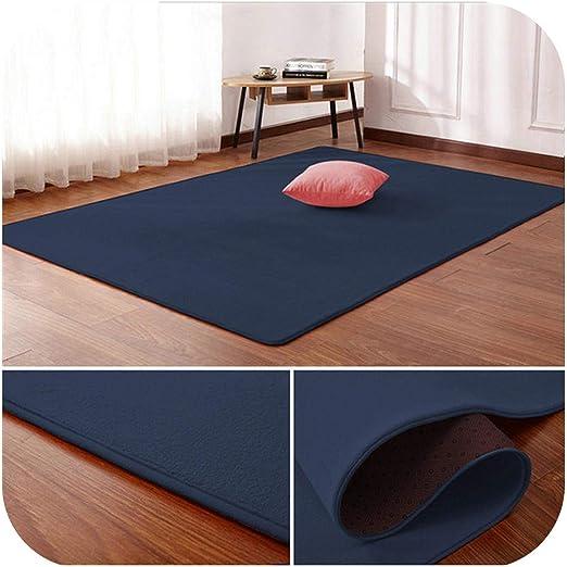 Anti-Skid Rectangle Coral Velvet Bedroom Living Room Carpet Floor Mat Rug Pad US