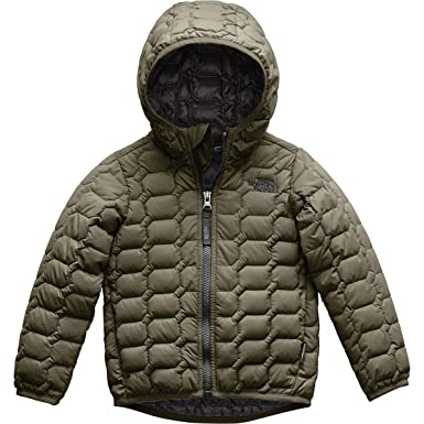 cb25a12b423c The North Face Todd Thermoball Hoodie - New Taupe Green - 3T  Amazon ...