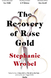 The Recovery of Rose Gold: The page-turning psychological thriller