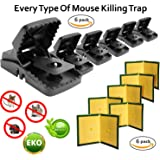 Abaxial [2018 Updated] Mouse Trap 6-Pack + Free Glue Traps Boards 6-Pack - Best Durable Effective Sanitary Sensitive Snap Bait Mousetrap   Safe Sticky Reusabmale   Rodent, Rat, Mice Protects Pets
