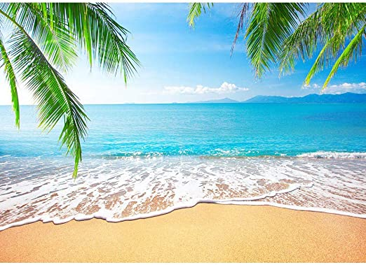 LB Tropical Beach Backdrop Blue Sea Photo Backdrops 7x5ft Fabric Palm Trees Background for Wedding Birthday Party Photo Booth Studio Props,Washable