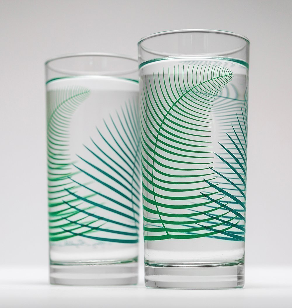 Summer Ferns Glassware - Set of 2 Everyday Drinking Glasses, Wedding Gift, Gift for Her