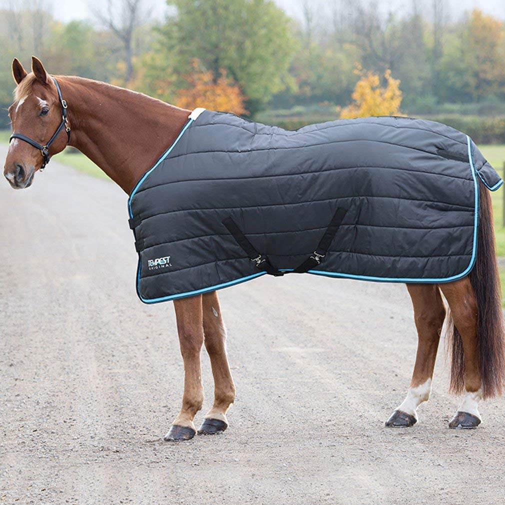 Black Turquoise 5'3\ black Turquoise 5'3\ Shires Tempest Mediumweight Stable Rugs Navy Standard Neck