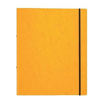 Pagna 44100-05 Carpeta de anillas, elástico, A4, 16 mm, amarillo: Amazon.es: Oficina y papelería