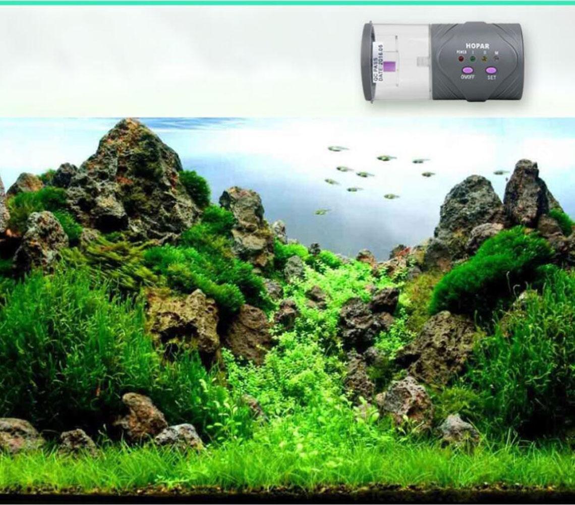 CWSPN Alimentatore automatico automatico automatico di pesci dell'acquario, erogatore di cibo per pesci display LCD per serbatoio di pesce Alimentatore di pesce di buona alimentazione quando non siete a casa per viaggio   viaggio   affari urgenti f140ff