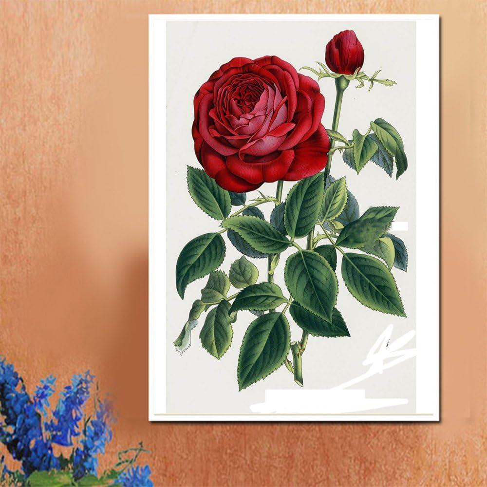 30X45CM // 12X18 Pouces Blxecky DIY 5D Diamant Peinture Point De Croix Broderie Diamond Painting Kits Salon Chambre D/écoration Autocollant Mural,Rose