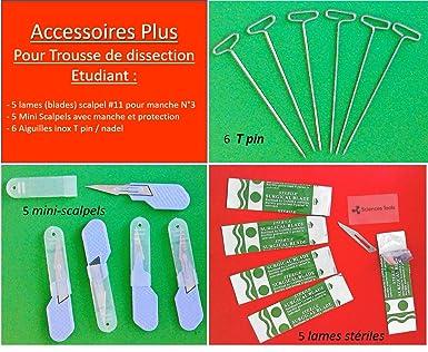 Accesorios Plus para estuche Dissección de estudiantes en ciencias: Amazon.es: Industria, empresas y ciencia
