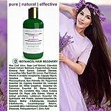 3 Pc Value Set: Cypress - Lavender Natural Hair