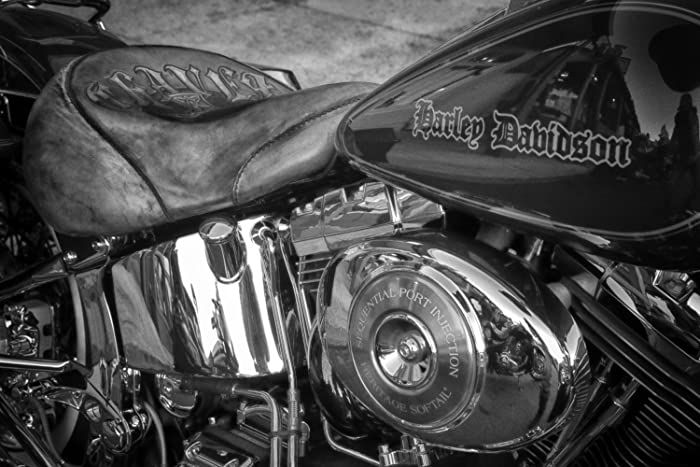 Harley Davidson Decor Man Cave Wall Print Harley Picture Gift For Men Gift  For Dads Boyfriend