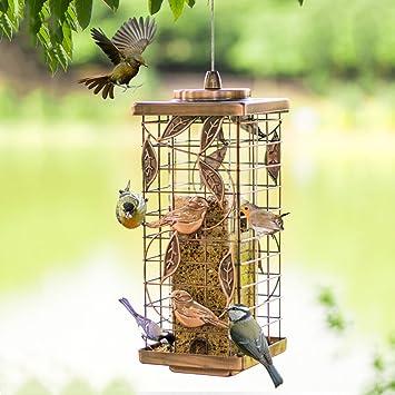 Al Aire Libre Pájaro Alimentador Colgando Mirador Salvaje Pájaro Automático Alimentador Perfecto Para Jardín Decoración Y Observación De Aves Para Amante De Las Aves Cacoffay,Metallic: Amazon.es: Deportes y aire libre