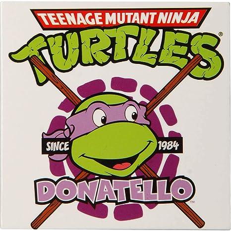 Amazon.com: teenage mutant ninja turtles TMNT Donatello ...