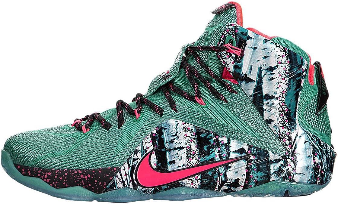 Men's Nike LeBron 12\