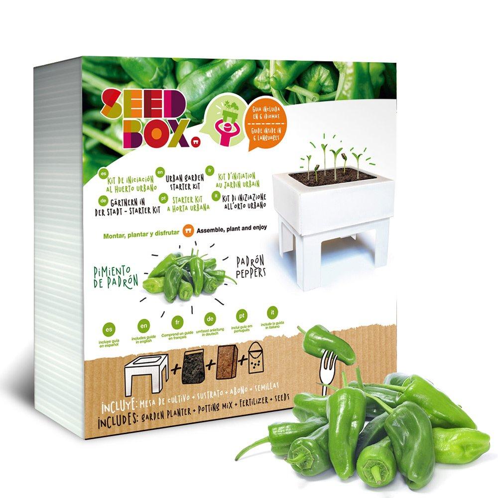 SeedBox SBCUAL - Huerto Urbano de albahaca EcoHortum