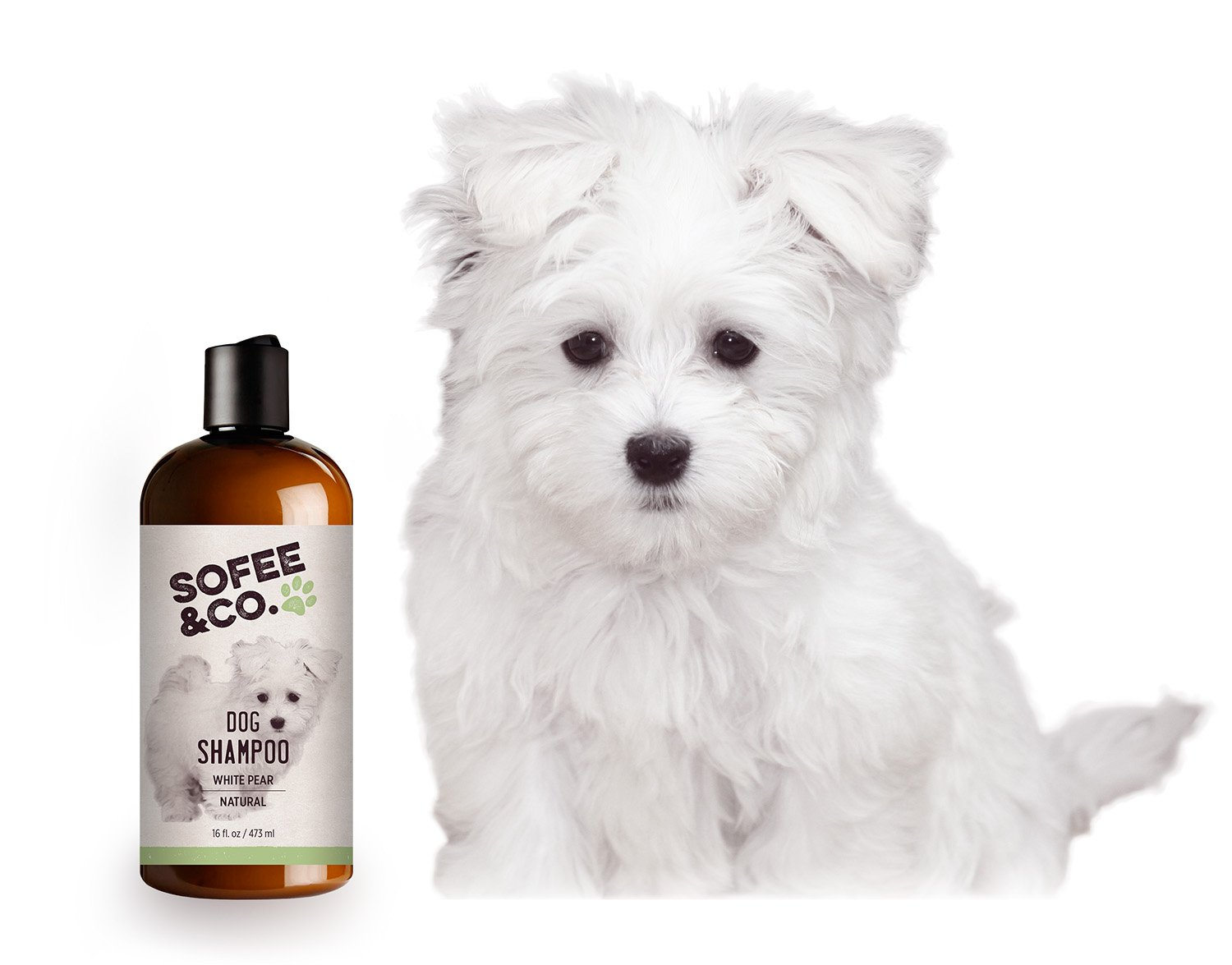 Sofee & Co. Natural Dog/Puppy Shampoo, White Pear - Clean, Moisturize, Deodorize, Detangle, Calm, Soothe, Soften, Normal, Dry, Itchy, Allergy, Sensitive Skin. Prevent Mattes. 16 oz by Sofee & Co. (Image #6)