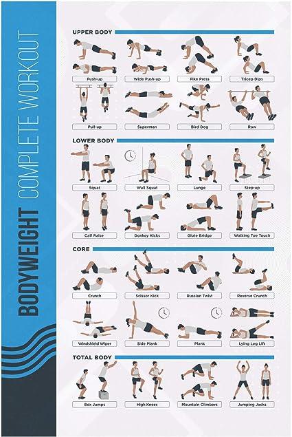 Fitmate Poster D Exercices De Musculation Avec Poids Libres Decoration Pour La Maison Guide De La Chambre 40 6 X 63 9 Cm Amazon Fr Sports Et Loisirs