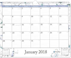 Blue Sky 2018 Wall Calendar, Twin-Wire Binding, 15