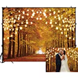 Funnytree 8x6FT Durable Fabric Glitter Autumn Forest Photography Backdrop Sparkle Natural Scenery Fall Landscape Leaves…