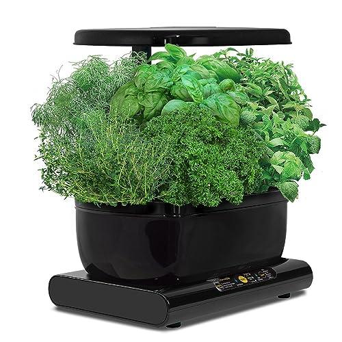 Miracle-Gro AeroGarden Harvest avec kit de capsules de graines d'herbes gourmets (noir)