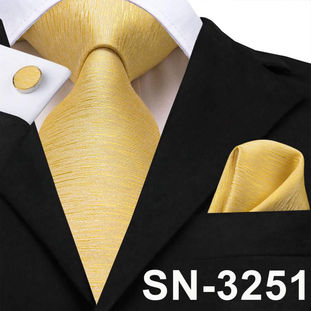 WOXHY Corbata de los Hombres Corbata de Seda Paisley Corbatas ...