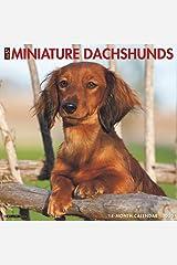 Just Mini Dachshunds 2020 Wall Calendar (Dog Breed Calendar) Calendar