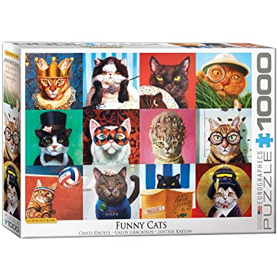 EuroGraphics Funny Cats by Lucia Heffernan 1000-Piece Puzzle: Toys & Games
