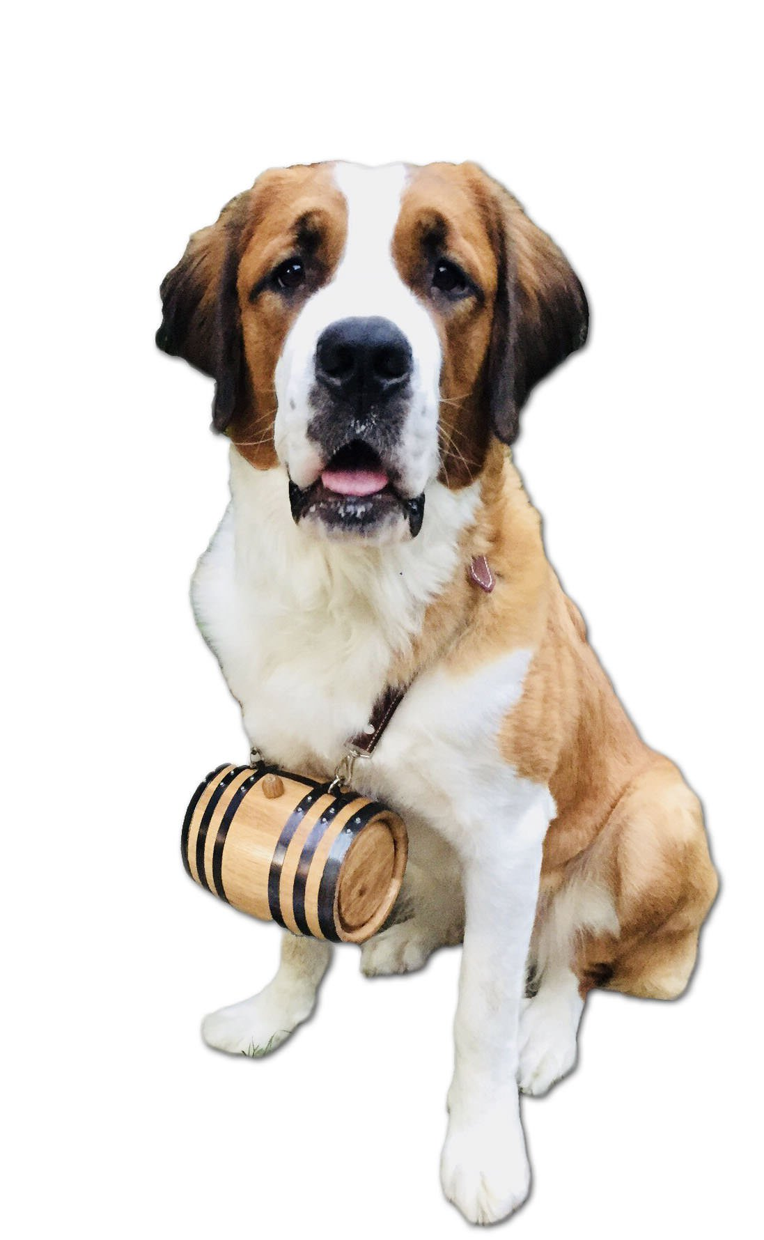 St. Bernard Dog Collar Barrel - Blank (1 Liter with Black Hoops)