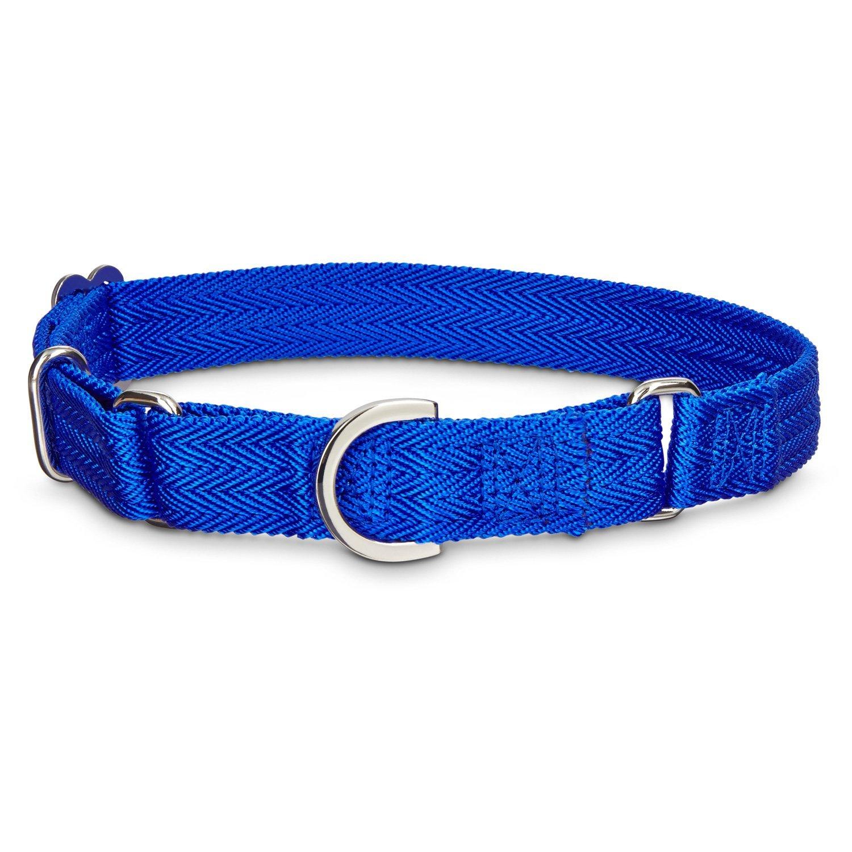 Good2Go No-Slip bluee Martingale Dog Collar, 1  W