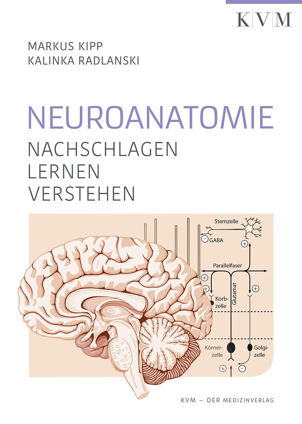 CompactLehrbuch der gesamten Anatomie / Innere Organsysteme: Amazon ...