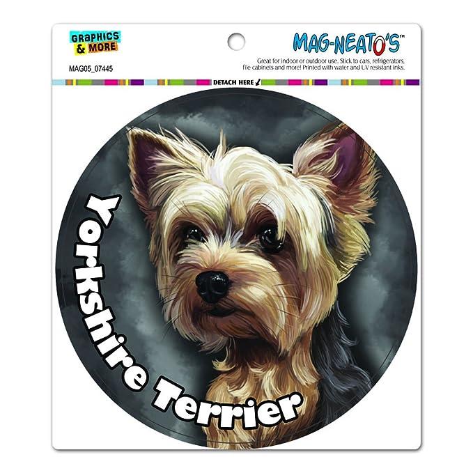 amazon com yorkshire terrier yorkie dog pet circle mag neato s