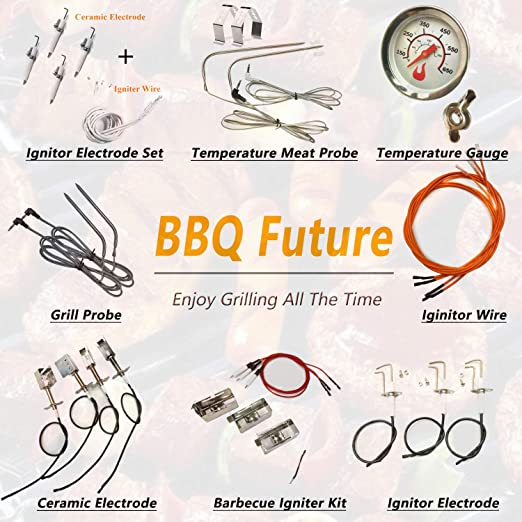 BBQ Future Ceramic Electrode with Mounting Screws Kit for Coleman ...